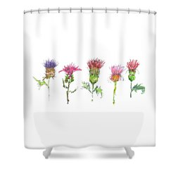 What Is It About A Thistle Fl006 Shower Curtain