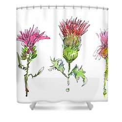 What Is It About A Thistle Shower Curtain