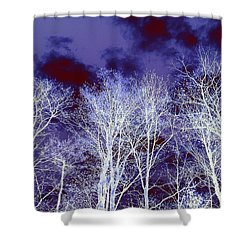 Shower Curtain featuring the photograph What Lies Above by Shana Rowe Jackson