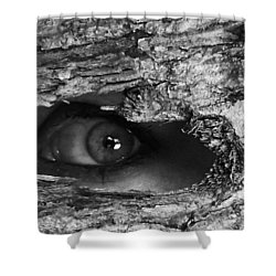 What The Forest Sees Shower Curtain