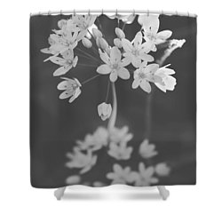 What The Heart Wants Shower Curtain by Laurie Search