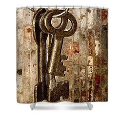 What They Unlock Shower Curtain by Charuhas Images