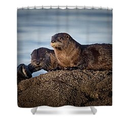 Shower Curtain featuring the photograph Whats For Dinner by Randy Hall