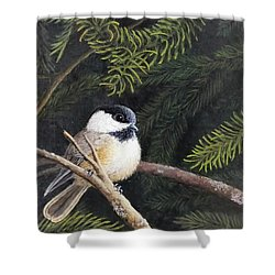 Whats New Shower Curtain