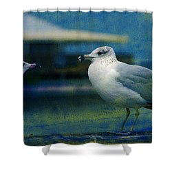 What's Up Bro' Shower Curtain by Susanne Van Hulst