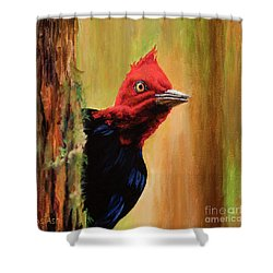 Shower Curtain featuring the painting Whats Up? by Igor Postash