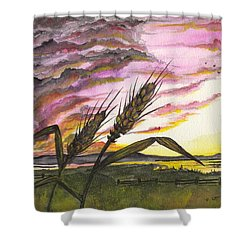 Shower Curtain featuring the painting Wheat Field by Darren Cannell