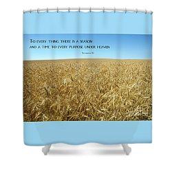 Wheat Field Harvest Season Shower Curtain