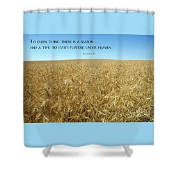 Wheat Field Harvest Season Shower Curtain