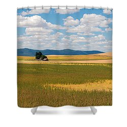 Wheat Fields In The Palouse Shower Curtain