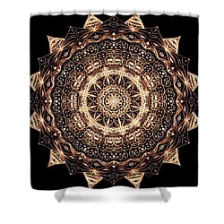 Wheel Of Life Mandala Shower Curtain