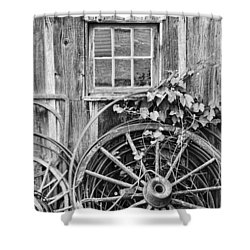 Wheels Wheels And More Wheels Shower Curtain