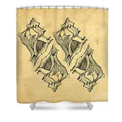 Shower Curtain featuring the digital art Whelk Seashells Vintage by Edward Fielding
