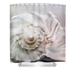 Shower Curtain featuring the photograph Whelk Shell by Benanne Stiens