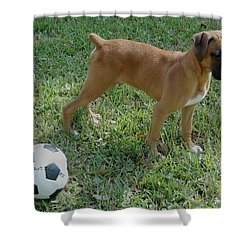When I Was Just A Pup Shower Curtain by DigiArt Diaries by Vicky B Fuller