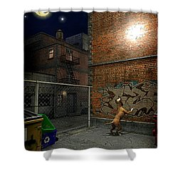 When Stars Fall In The City Shower Curtain by Cynthia Decker