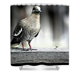 When The Doves Cry Shower Curtain