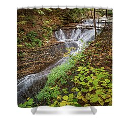 Shower Curtain featuring the photograph When The Leaves Fall by Dale Kincaid