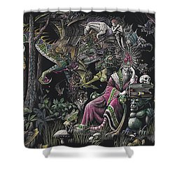 When Wizards Dream Shower Curtain by Stanley Morrison