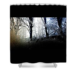 Where Dawn And Dusk Meet Shower Curtain