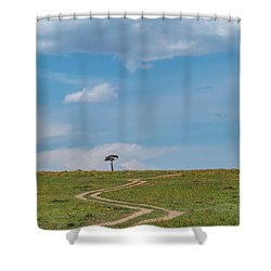 Where Does It Lead To Shower Curtain