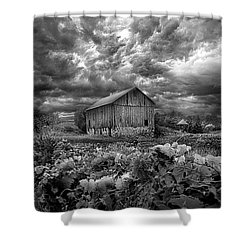 Where Ghosts Of Old Dwell And Hold Shower Curtain by Phil Koch