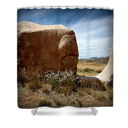Shower Curtain featuring the photograph Where Have All The Flowers Gone by Joe Kozlowski