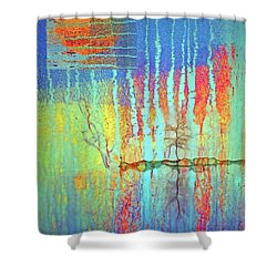 Shower Curtain featuring the photograph Where Have All The Trees Gone? by Tara Turner
