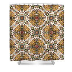 Shower Curtain featuring the digital art Where In The World by Wendy Wilton