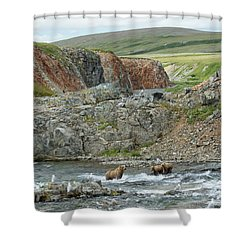 Where The Bears Are  Shower Curtain