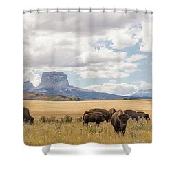 Where The Buffalo Roam Shower Curtain by Alex Lapidus