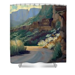 Where The Road Bends Shower Curtain