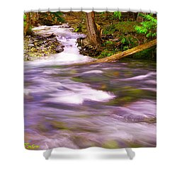 Shower Curtain featuring the photograph Where The Stream Meets The River by Jeff Swan