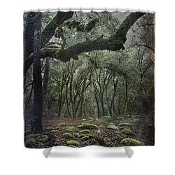 Where The Wild Hearts Roam Shower Curtain by Laurie Search
