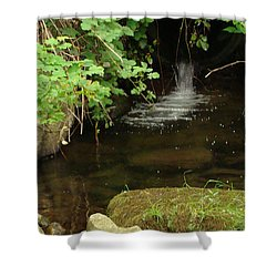 Where's The Fish? Shower Curtain by Rod Jellison
