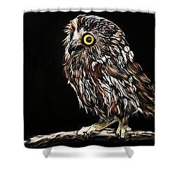 Whet Owl Shower Curtain