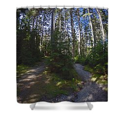 Which Path? Shower Curtain