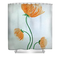 Whimsical Flowers Shower Curtain