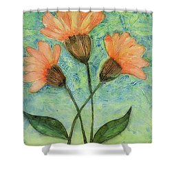 Whimsical Orange Flowers - Shower Curtain by Helen Campbell