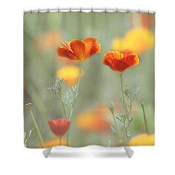 Whimsical Summer Shower Curtain by Kim Hojnacki