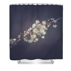 Shower Curtain featuring the photograph Whip by Shane Holsclaw
