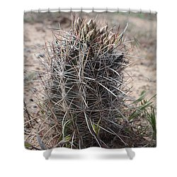 Whipple's Fishook Cactus Shower Curtain