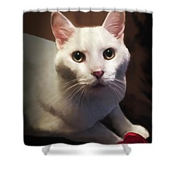 Whiskers And Rose Shower Curtain
