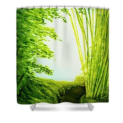 Whisper #09 Shower Curtain by Donald k Hall