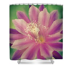 Shower Curtain featuring the photograph Whisper Of Color by Ana V Ramirez