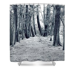 Shower Curtain featuring the photograph Whispering Forest by Wayne Sherriff