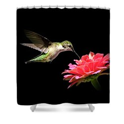 Whispering Hummingbird Shower Curtain by Christina Rollo