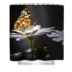 Whispering Wings II Shower Curtain