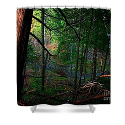 Whisperings Shower Curtain by Elfriede Fulda