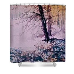 Shower Curtain featuring the painting Whispers In The Fog  Partii by Carolyn Rosenberger